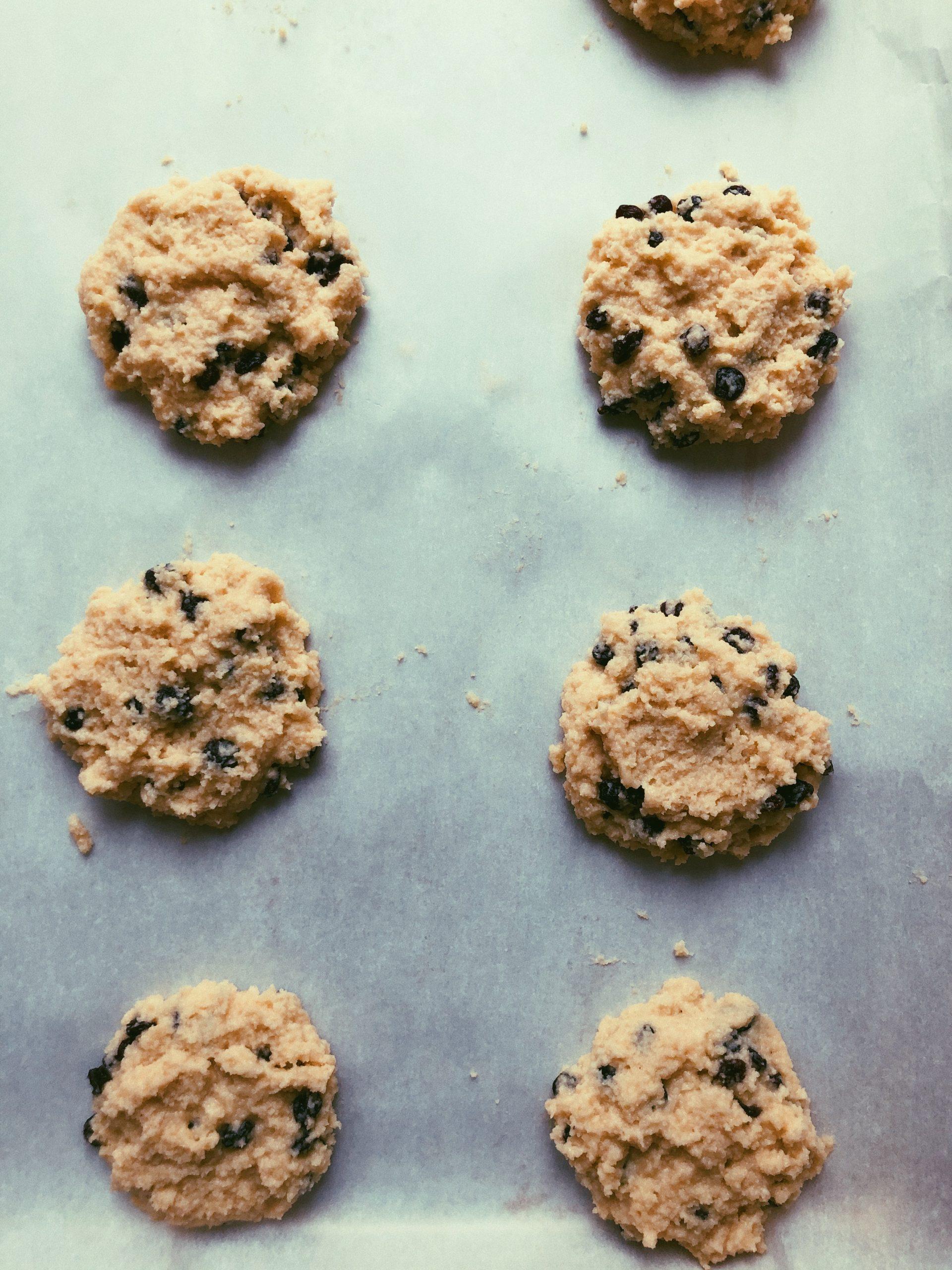 grain free gluten free currant scones