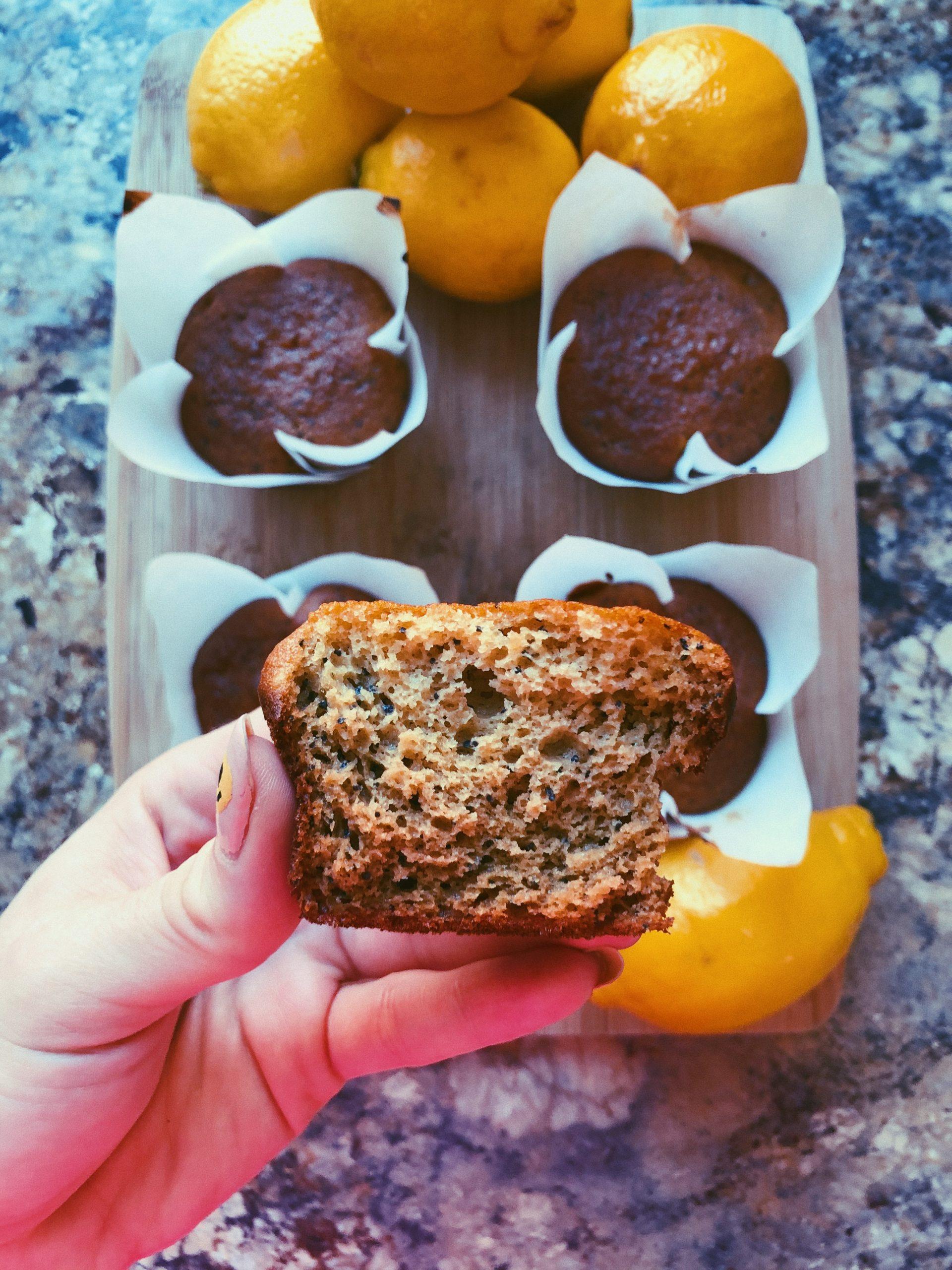 lemon poppyseed muffins scd diet
