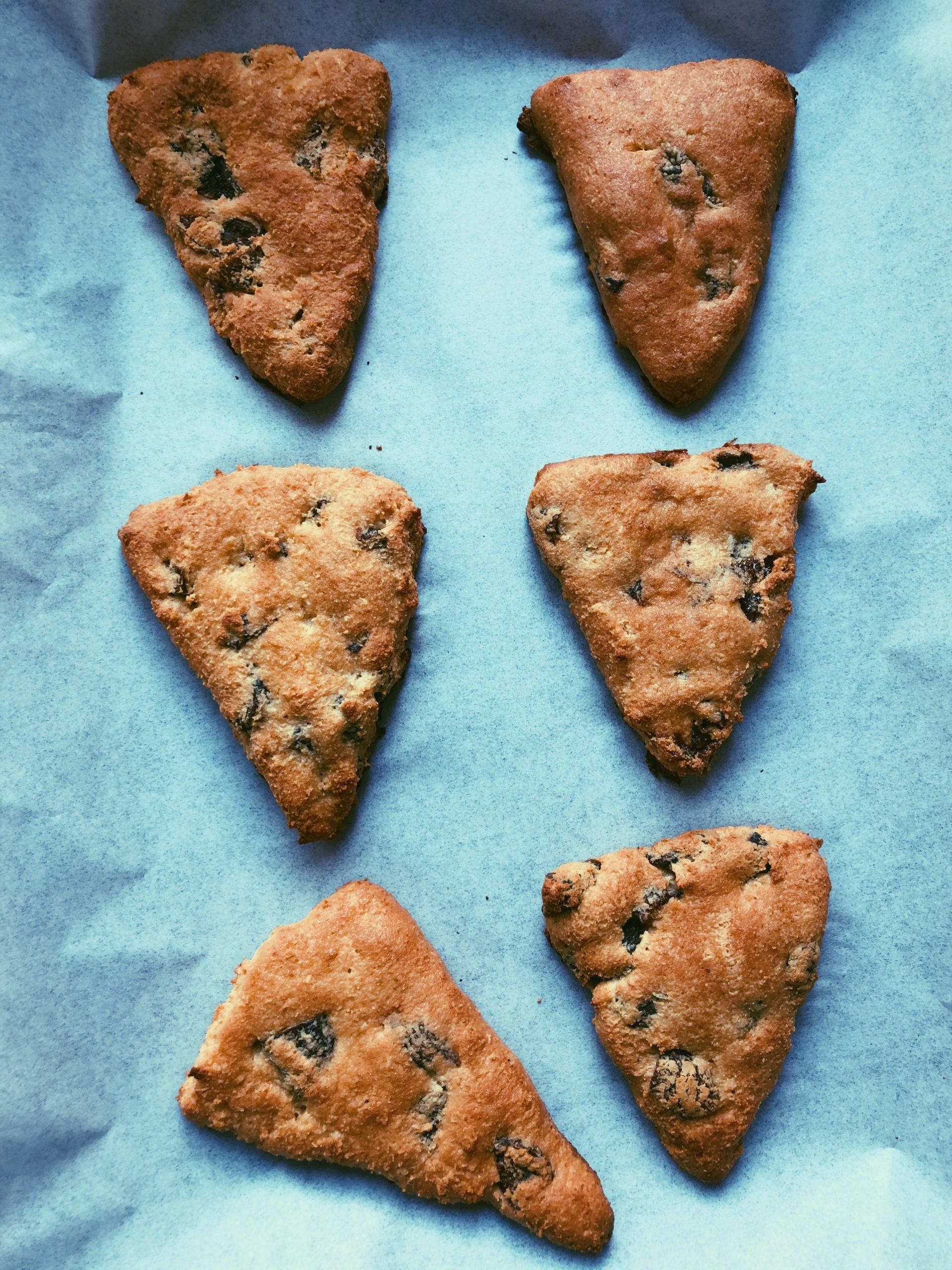 grain free gluten free apricot scones