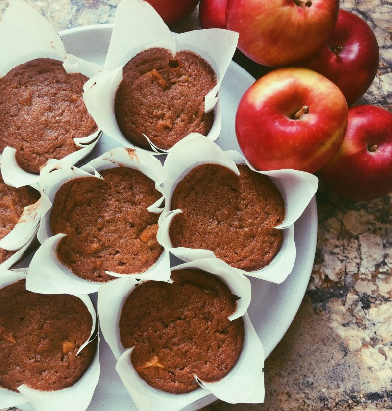 apple cinnamon muffins (grain free/scd diet)