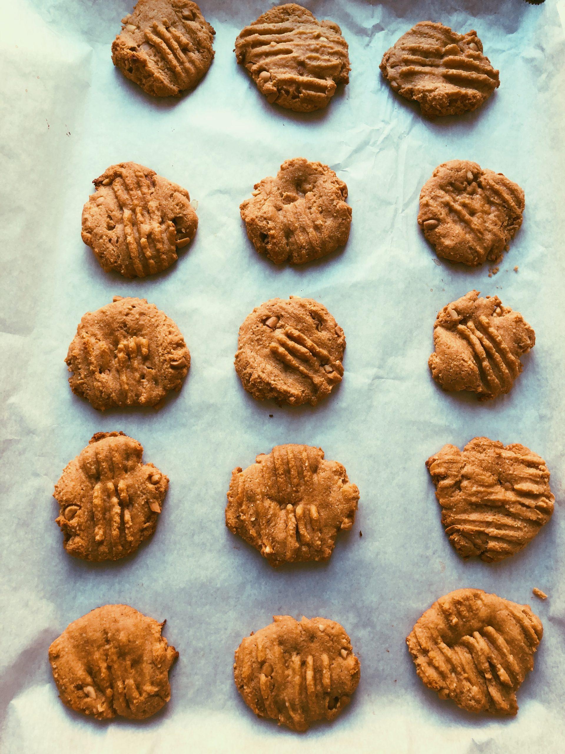 grain free peanut butter cookies scd diet