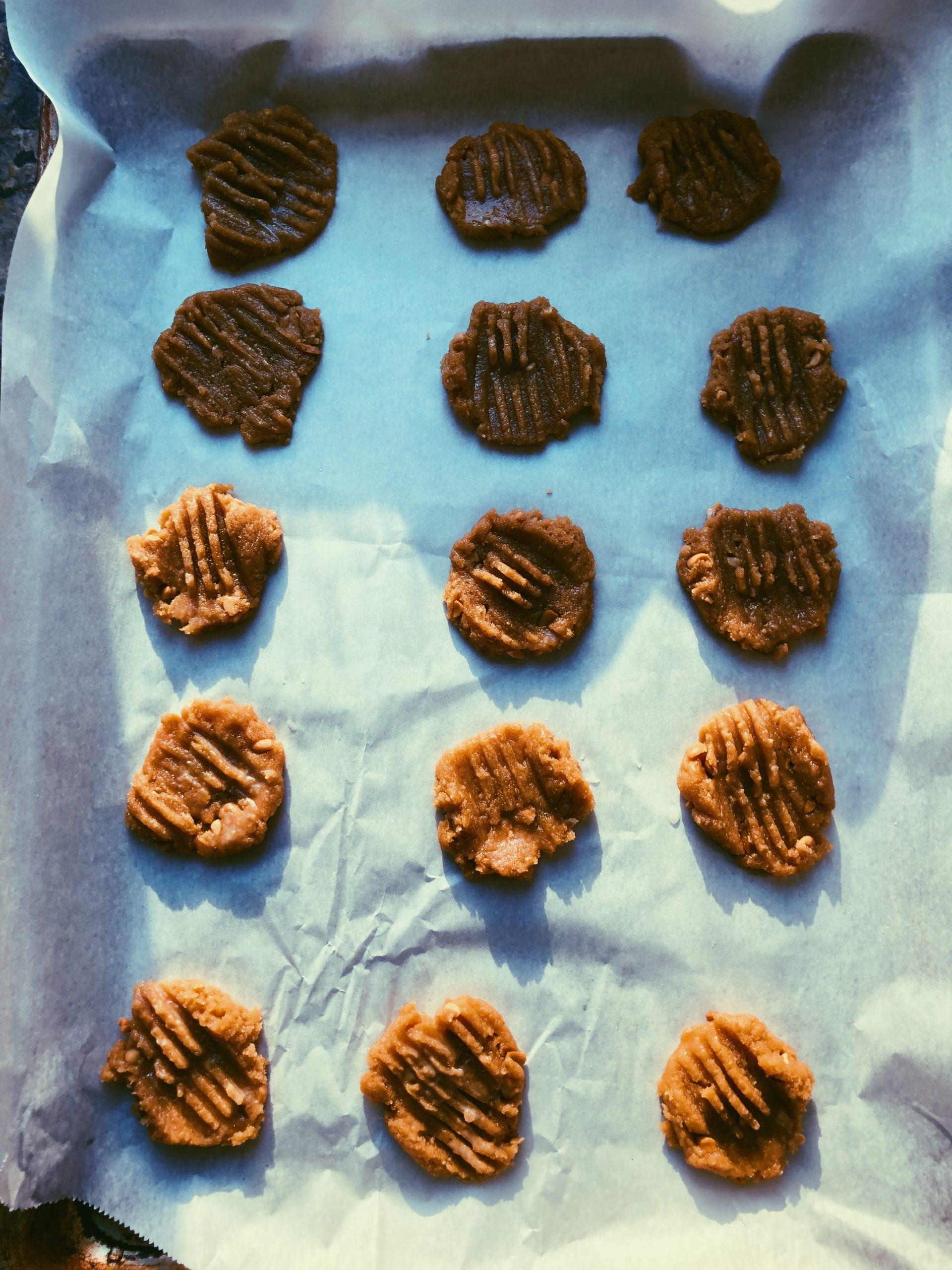 grain free peanut butter cookie scd diet