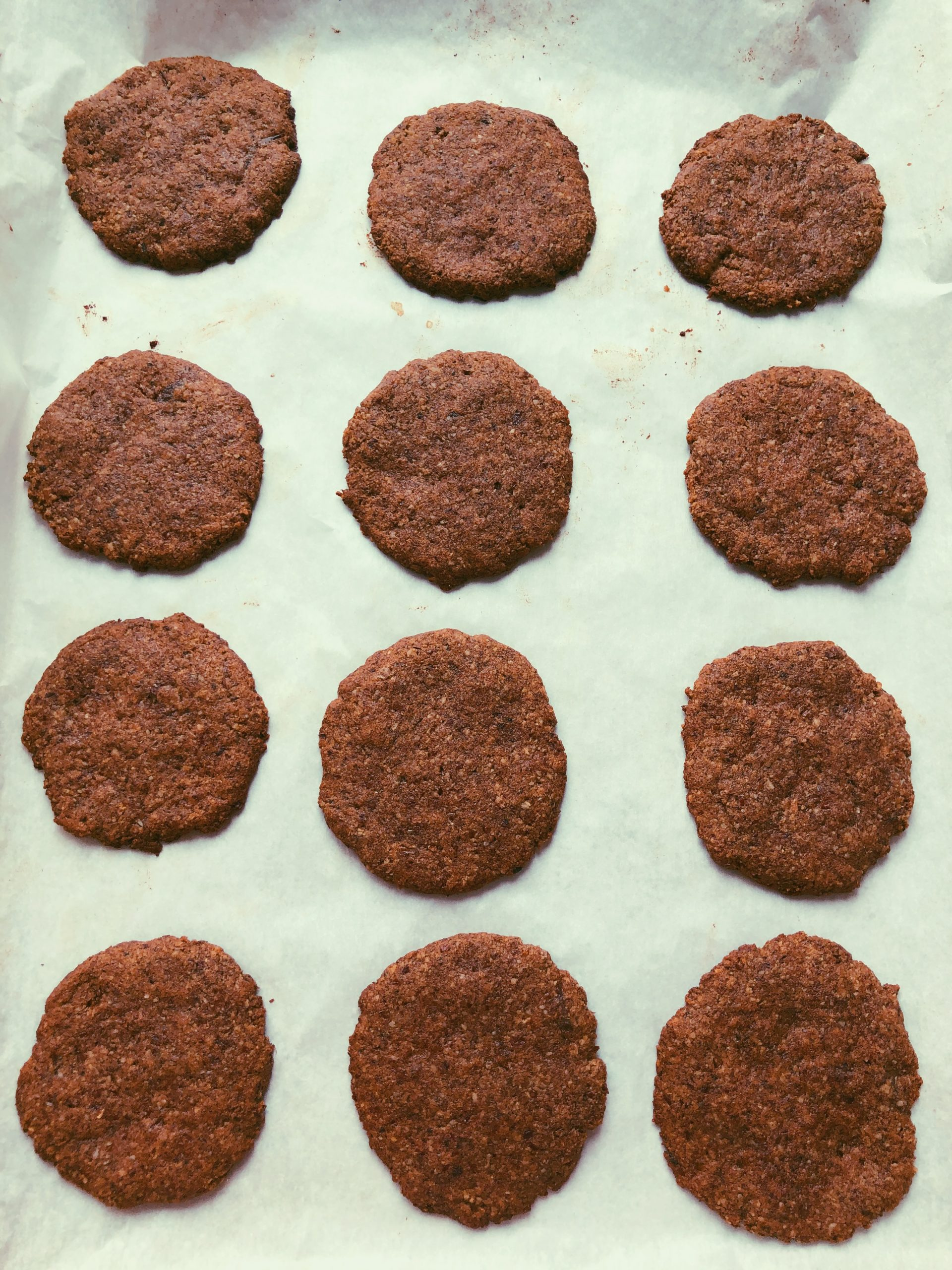 grain free scd diet chocolate cookies with icing