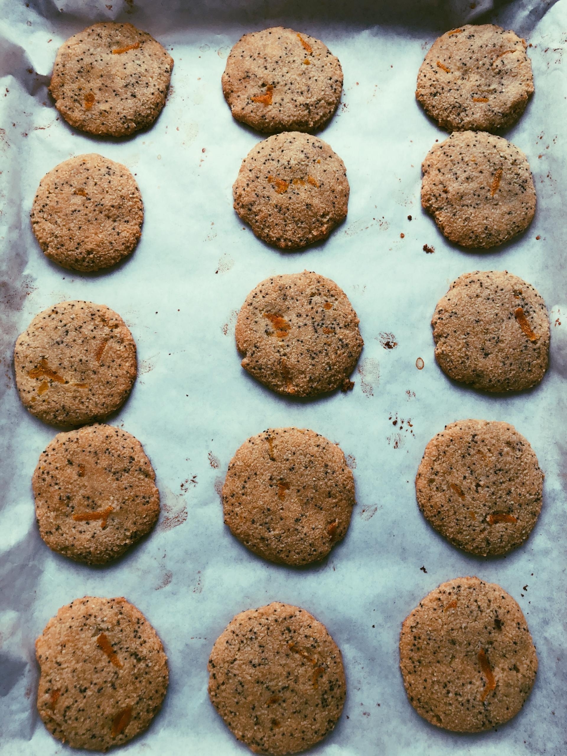 orange poppyseed cookies (grain free, scd diet)