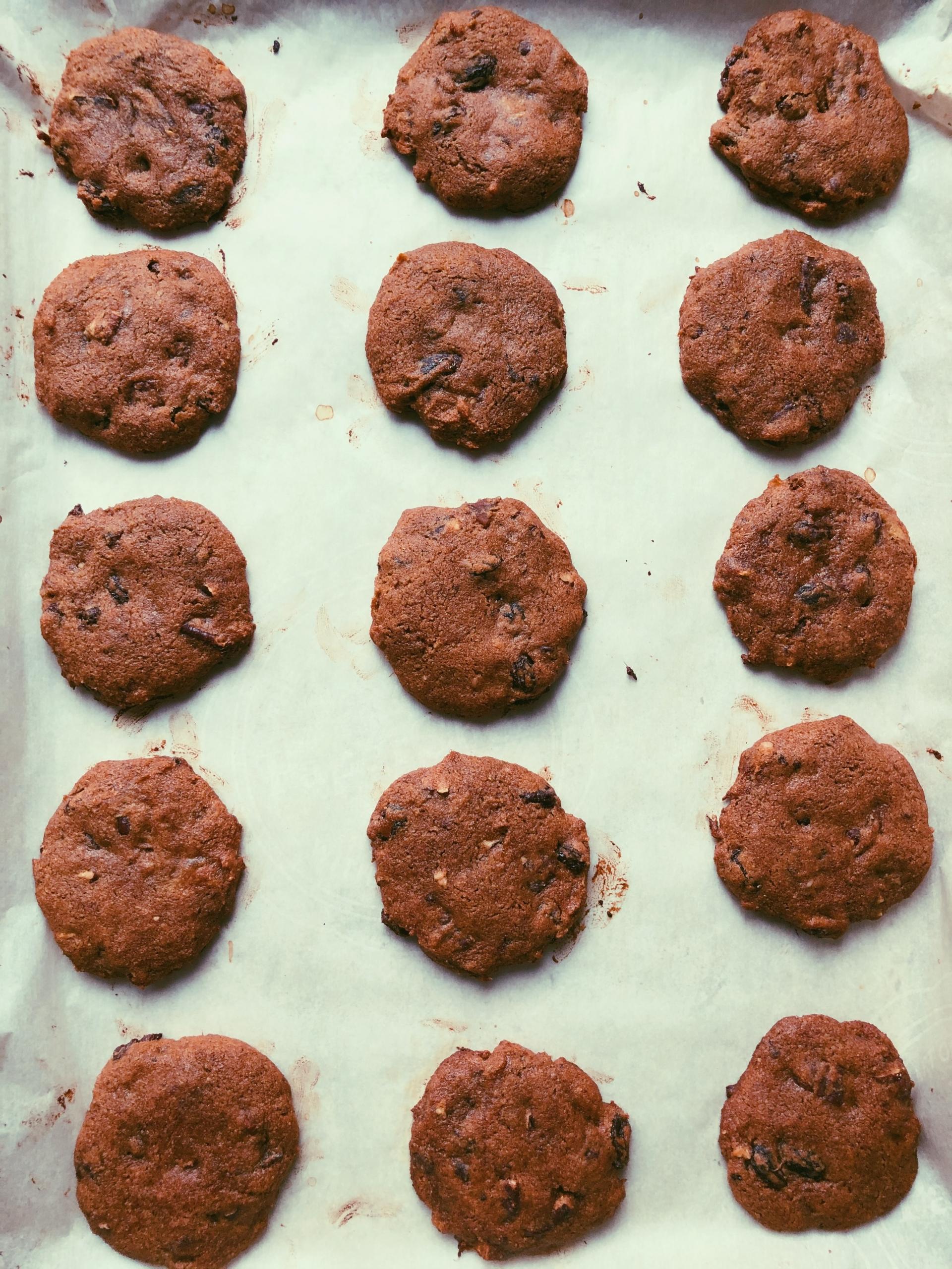 molasses monster cookies grain free scd diet