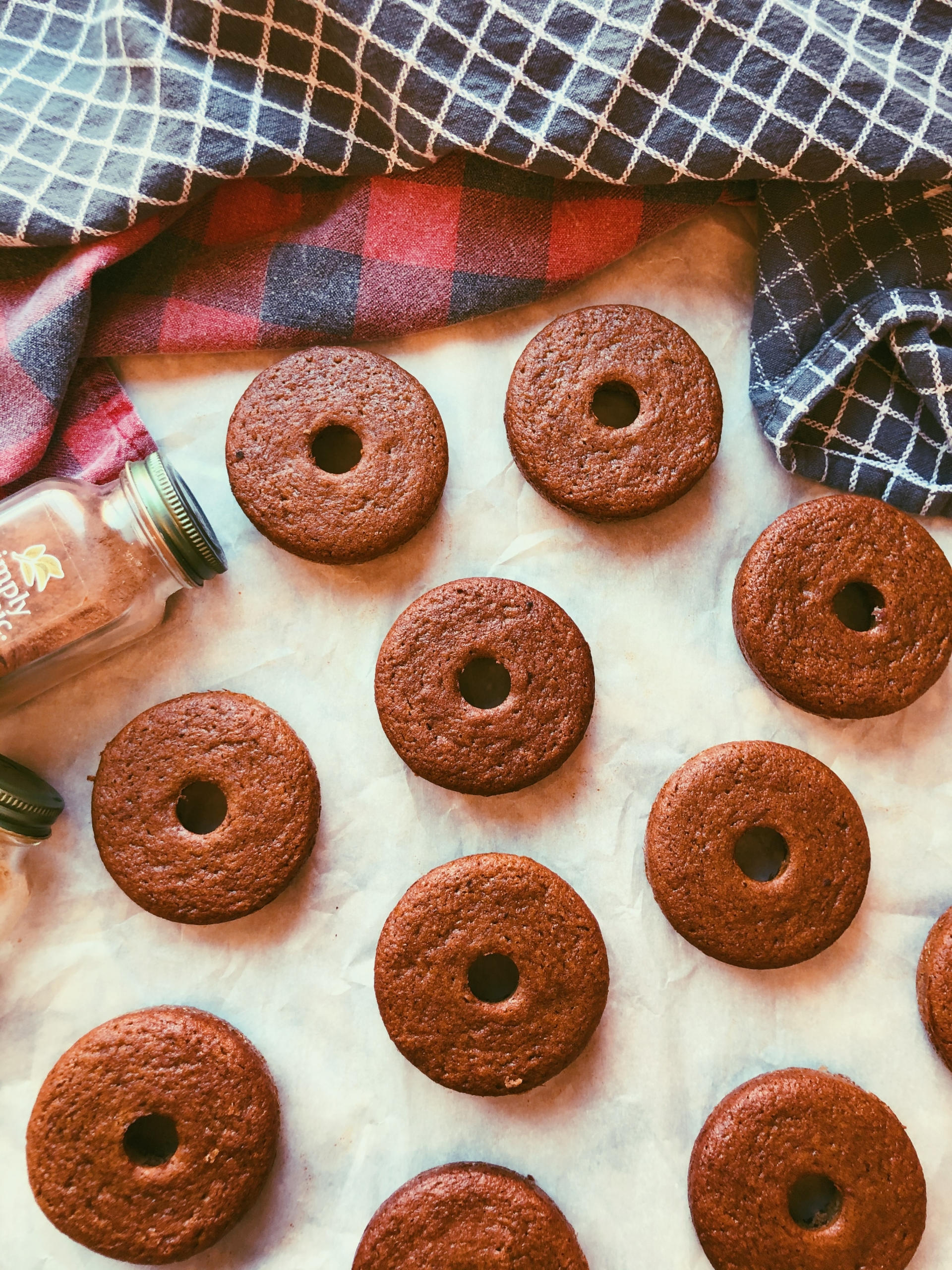 old fashioned donuts (grain free, scd diet)