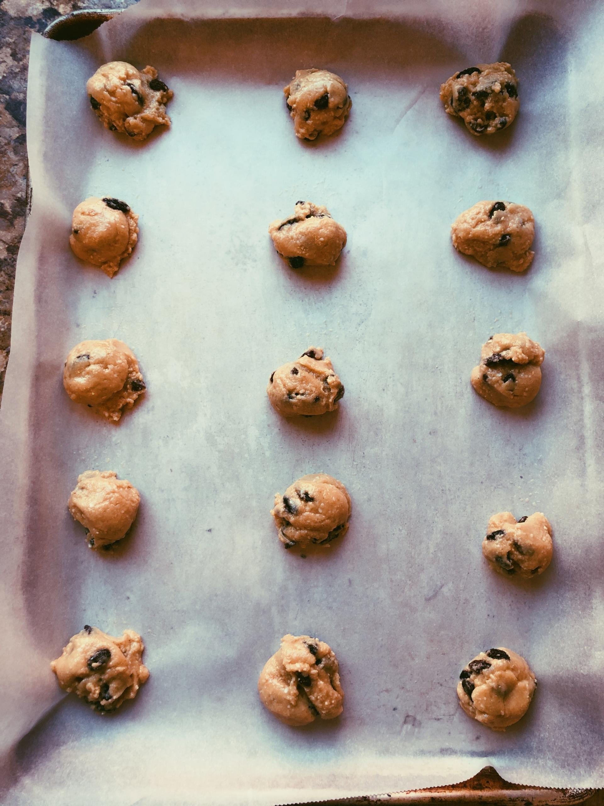 tahini raisin cookies, grain free, scd diet